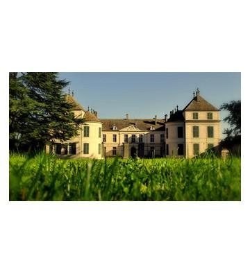 Château de Coppet